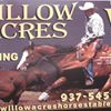 Willow Acres Equestrian Facility