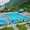 Penguin Swimming Pool
