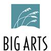 BIG ARTS - Music, Arts, and Entertainment