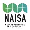 New Adventures in Sound Art
