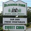 Blackmer Farm