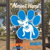Pawsitive Match Rescue Foundation