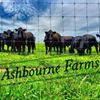Ashbourne Farms