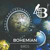 Bohemian Birds