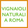 Vignaioli Naturali a Roma - Enoteca