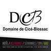 Domaine de Cicé-Blossac - Golf, Resort & Spa