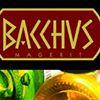 Bacchus Magerit
