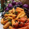 Wayland Winter Farmers' Market