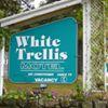 White Trellis Motel