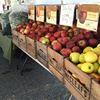 McCleaf's Orchard