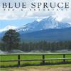 Blue Spruce Bed & Breakfast