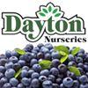 Dayton Nursery