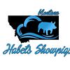 Habets Show Pigs