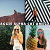 Texas A&M Alpha Chi Omega