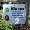 Moser Fruit Tree Sales