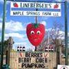 Lineberger's Maple Springs Farm