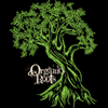 Organic Roots Extra Virgin Olive Oil