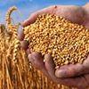 Agrar - Dienste Leine - Solling GmbH & Co. KG