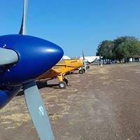 Foliar Aviação Agrícola