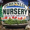 Perennial Landscape & Nursery