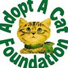 Adopt a cat foundation