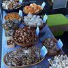 Michigan Mushroom Market