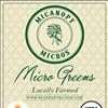 Micanopy Micros