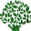 The Granola Tree