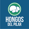 Hongos del Pilar