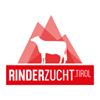 Rinderzucht Tirol