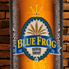 Blue Frog Brewing Company