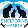 Sheltering Hands, Inc.