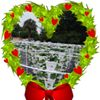 Heart Of Christmas Farms
