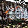 Shop Montano
