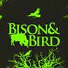 Bison and Bird