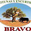 Aceitunas Y Encurtidos Bravo