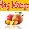 Hay Mango