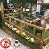 Homeleigh Garden Centre