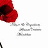 Nature & Coquelicots