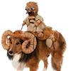 Pet Supplies Plus - Royal Oak, MI