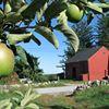 Hayward Farm