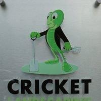 Cricket landscaping ltd
