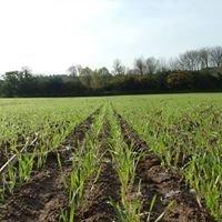 J V Farming Ltd