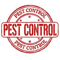 Pestforce Stockport