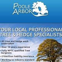 Poole Arbor Tree Services