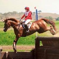 Telesis Equestrian
