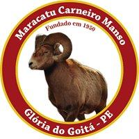 Maracatu Carneiro Manso