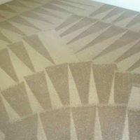 DMD Carpet & Tile Cleaning