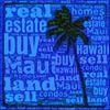 Georgie Hunter - Maui Realtor Sales #58089