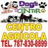 Dogs Hotel Center